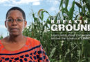How AI can improve agriculture for better food security